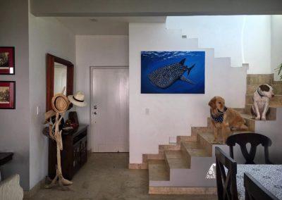 Whaleshark - Paola Beck, 2019