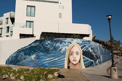 Paola Beck Murals