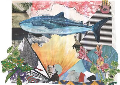 Whaleshark - collage - Paola Beck