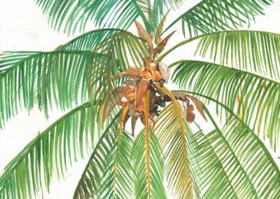palmas - paola beck